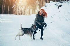 Belle fille avec le chien de traîneau de chien en bois neigeux Photos stock