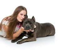 Belle fille avec le terrier gris de stafford Image stock