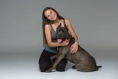 Belle fille avec le terrier gris de stafford Photos stock