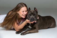 Belle fille avec le terrier gris de stafford Photographie stock libre de droits