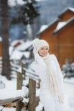 Belle fille avec un chien de traîneau sibérien dans la neige Photographie stock