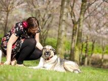 Belle fille ayant choyer son chien pendant une promenade dans le sprin Image stock