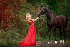 Belle fille blonde mince dans la robe rouge étreignant un cheval noir image stock