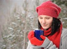 Belle fille dans la forêt de l'hiver Images stock