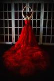 Belle fille dans la longue robe rouge et dans la couronne royale Photos libres de droits