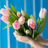 Belle fille dans la robe bleue avec des tulipes de fleurs dans des mains sur un fond clair Photographie stock libre de droits