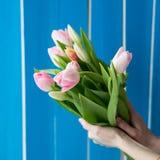 Belle fille dans la robe bleue avec des tulipes de fleurs dans des mains sur un fond clair Image stock