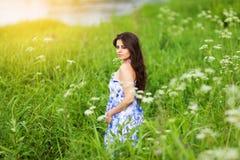 Belle fille dans la robe bleue parmi des wildflowers photo stock