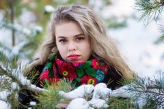 Belle fille dans la séance photos de Noël d'hiver au parc Photo stock
