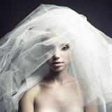 Belle fille dans un voile Image stock