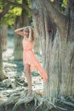 Belle fille dans une robe rose dans la forêt Image stock