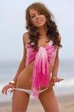 Belle fille de bikini Photo stock