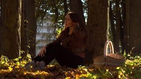 Belle fille de brune avec le panier de pique-nique se reposant sous l'arbre dans le jour ensoleillé chaud de forêt d'automne vidé banque de vidéos