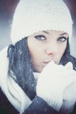 Belle fille de l'hiver Images libres de droits