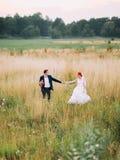 Belle fille de redhair dans une robe blanche et un gentil marié avec le bouquet marchant sur le champ de blé au coucher du soleil Photographie stock