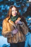 Belle fille en forêt de l'hiver Image stock