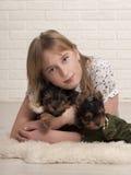 Belle fille et deux chiens Image libre de droits
