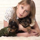 Belle fille et deux chiens Image stock