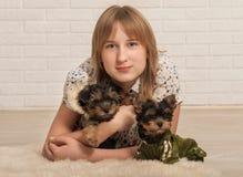 Belle fille et deux chiens Photo stock
