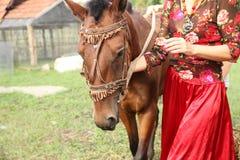 Belle fille gitane dans des vêtements lumineux avec un cheval à une ferme photo libre de droits