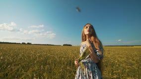 Belle fille posant sur le champ de blé ensoleillé Concept de liberté Femme heureuse ayant l'amusement dehors dans un domaine de b banque de vidéos