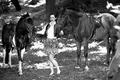 Belle fille près de cheval brun Photo stock