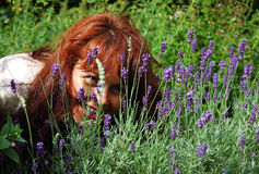 Belle fille regardant des fleurs Photographie stock