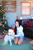 Belle fille souriant et étreignant le chien dans le studio sur le fond d Photos libres de droits