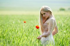 Belle fille sur le champ vert avec des pavots au printemps Photos stock