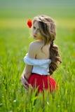 Belle fille sur le gisement de céréale au printemps images libres de droits
