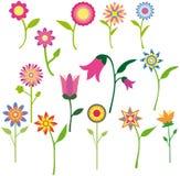 belle fleur de ramassage Images stock