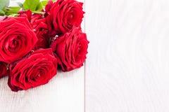 Belle fleur de rose de rouge sur le fond noir Photographie stock