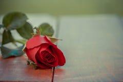 Belle fleur de rose de rouge de vintage sur la table en bois et garde à la maison Photographie stock libre de droits