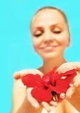 Belle fleur femelle de rouge de fixation photos libres de droits