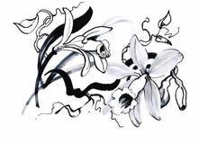 Belle fleur monochrome et noire et blanche d'isolement Courbes de niveau tirées par la main courses Photo stock