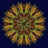 Belle fleur multicolore sur un fond bleu Photographie stock