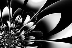 Belle fleur noire et blanche dans la conception de fractale Illustration pour photos stock
