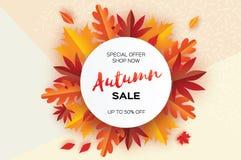Belle foglie del taglio della carta di autunno Vendita Modello dell'aletta di filatoio di settembre Struttura del cerchio Spazio  Fotografie Stock Libere da Diritti