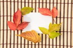 Belle foglie di acero verdi, rosse e gialle di autunno e un envel Immagini Stock Libere da Diritti