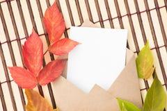 Belle foglie di acero verdi, rosse e gialle di autunno e un envel Fotografia Stock