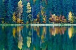 Belle foglie di autunno e riflessioni meravigliose fotografia stock libera da diritti