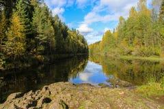 Belle forêt d'automne à la côte de fleuves Photo stock
