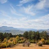 Belle forêt d'automne Photographie stock