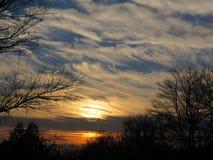 Belle forêt de bord d'arbres d'Amber Sunset White Wispy Clouds Image stock