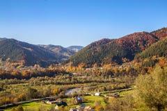 Belle forêt orange et rouge d'automne de forêt d'automne, beaucoup d'arbres dans les collines oranges, chêne orange, bouleau jaun photos libres de droits
