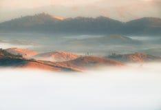 Belle foreste della montagna con molta foschia Fotografie Stock Libere da Diritti