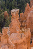 Belle formation de roche en gorge de Bryce. Photo libre de droits