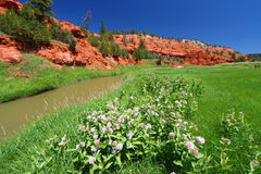Belle Fourche River - Wyoming. Belle Fourche River flows through beautiful red rock at Devils Tower National Monument - Wyoming Royalty Free Stock Image