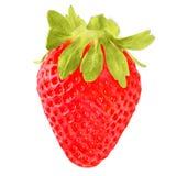 Belle fraise d'isolement sur le fond blanc Photographie stock
