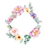 Belle frontière de cadre de losange d'aquarelle avec la pivoine, fleur, feuillage, branches Photo stock